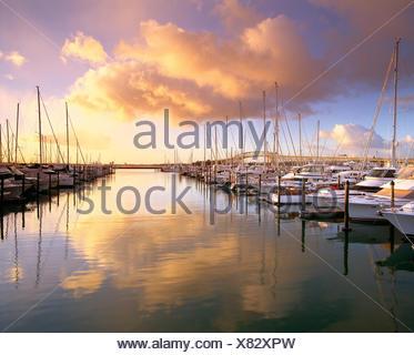 La Nouvelle-Zélande. Auckland. Yachts à marina au lever du soleil. Banque D'Images
