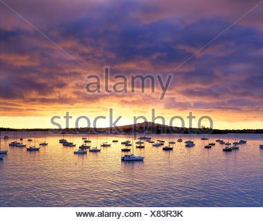 La Nouvelle-Zélande. L'île du nord. auckland.. rangitoto devonport. Vue sur le port avec bateaux amarrés au lever du soleil. Banque D'Images