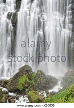 Marokopa Falls, Waikato, Nouvelle-Zélande, île du Nord Banque D'Images