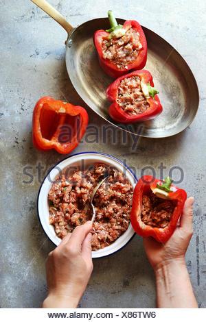 Farce aux poivrons rouge femelle avec de la viande hachée.vue d'en haut Banque D'Images