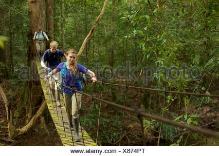 Un garçon et fille traverser un pont suspendu à Gunung Palung National Park. Banque D'Images