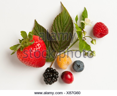 Mélange de petits fruits: fraises, framboises rouges et or, de mûre, de bleuet et de cranberry avec feuilles et fleurs. Banque D'Images