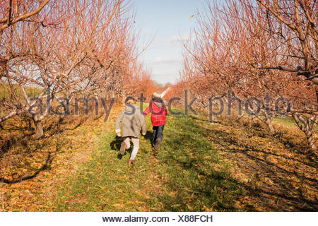 Deux enfants courant le long d'une allée d'arbres. Banque D'Images