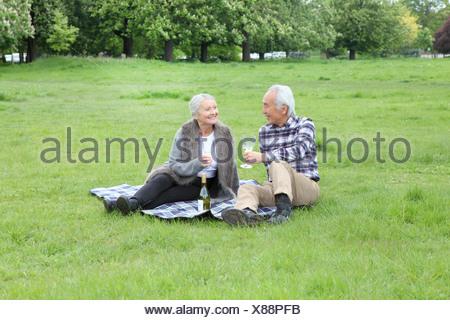 Vieux couple ayant le vin à une aire de pique-nique Banque D'Images