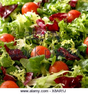 Une salade mélangée avec des tomates cerises Banque D'Images