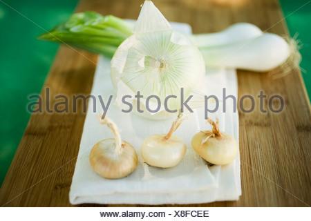 Différents types d'oignons sur la planche à hacher FoodCollection Banque D'Images
