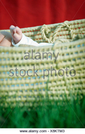 Porte-bébé de paille sur l'herbe Banque D'Images