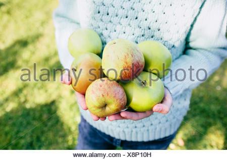 Girl holding homegrown pommes dans les mains Banque D'Images