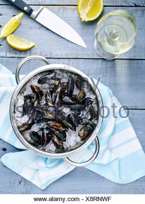 Les moules sur la glace prêt à cuire avec le citron et le vin blanc Banque D'Images