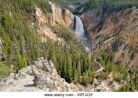 Lower Falls avec le sentier Red Rock, Grand Canyon de la Yellowstone River, vue à partir de la rive nord, le Parc National de Yellowstone Banque D'Images