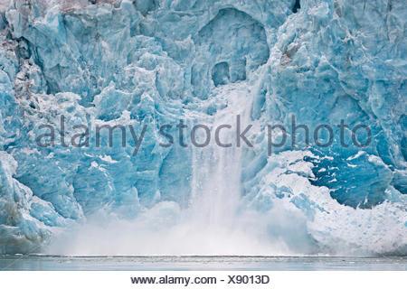 Glacier de mise bas, bord du Glacier, Liefdefjorden Monacobreen, Spitsbergen, Svalbard, îles Svalbard et Jan Mayen (Norvège)