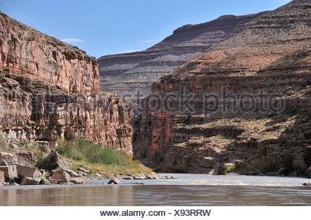 Rivière San Juan, entre Bluff et Mexican Hat, du Plateau du Colorado, Utah, USA, United States, Amérique, Banque D'Images