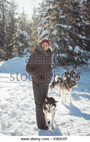 Homme debout avec les chiens husky de Sibérie Banque D'Images