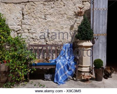 Petite boîte arbre en pot vieille cheminée à côté de banc en bois avec jet blue vérifié et chat tigré contre mur de pierre Banque D'Images
