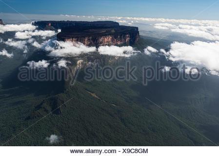 Le Roraima est le plus haut de la chaîne de Pakaraima Tepuis les plateaux en Amérique du Sud, Pakarajma Phillipai, montagnes, près de Guyana, en Amérique du Sud Ouest Banque D'Images