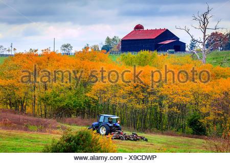 Le tracteur de la tonte du gazon sur une ferme dans le centre du Kentucky Banque D'Images
