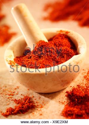 Le chili en poudre dans un mortier et pilon Banque D'Images