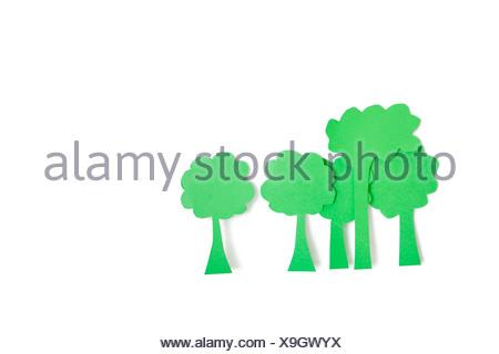 Les découpes de papier vert des arbres sur fond blanc Banque D'Images