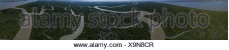Vue panoramique de rivière en forêt, Irrawaddy-Delta, Myanmar Banque D'Images