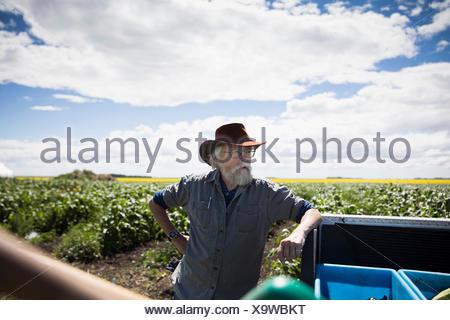 Senior male farmer leaning on truck sur sunny farm Banque D'Images