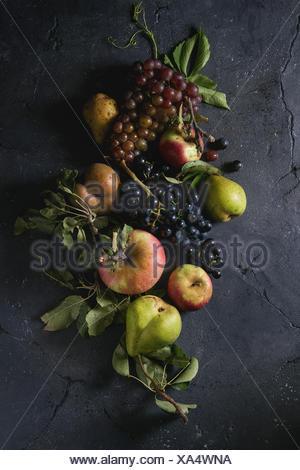 Variété de fruits d'automne venu les pommes biologiques, trois sortes de raisins, poires avec des feuilles sur fond texture sombre. Vue de dessus avec l'espace. nourriture backgrou