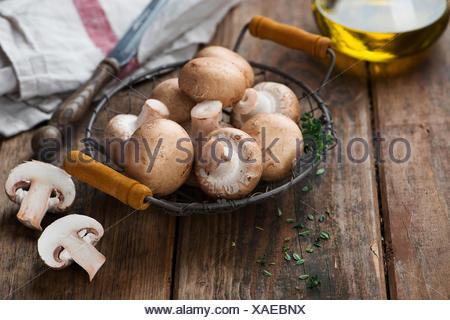 Champignon champignons frais