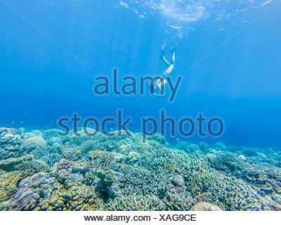 Girl swimming underwater avec tuba, Gili Meno, Indonésie Banque D'Images