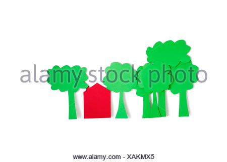 Coupe papier d'arbres avec une maison d'habitation sur fond blanc Banque D'Images
