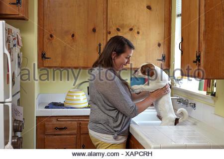 Mid adult woman bathing chien dans un évier de cuisine Banque D'Images