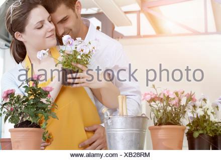 Couple de-potting plantes ensemble Banque D'Images