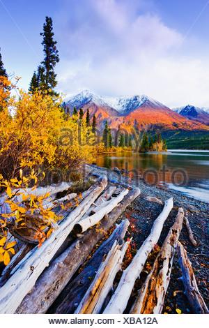 Kathleen Le lac et les montagnes, parc national et réserve de parc national du Canada, Yukon Banque D'Images
