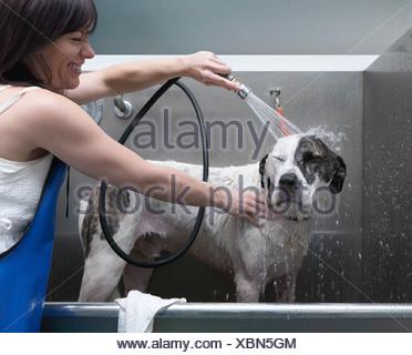 Bain Femme chien, laughing Banque D'Images