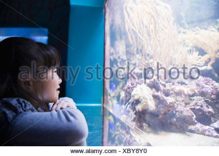 Fille d'admirer dans l'aquarium Sea Life Banque D'Images