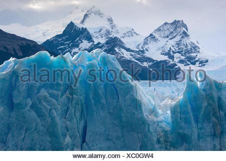 Glacier Perito Moreno,,Argentine,Patagonie Banque D'Images