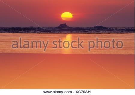 Coucher de soleil sur la glace, le lac Manitoba, le marais Delta, Manitoba, Canada. Banque D'Images
