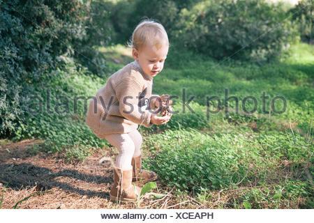 Garçon la collecte des pommes de pin dans les bois Banque D'Images
