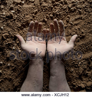 Studio shot of man's hands on dirt Banque D'Images