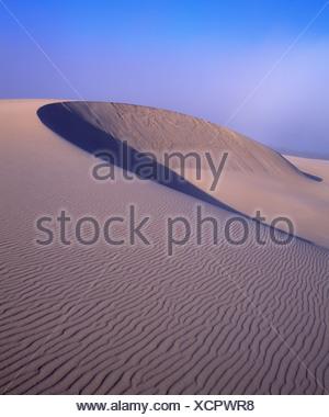 Une dune de sable parfaitement formé Banque D'Images