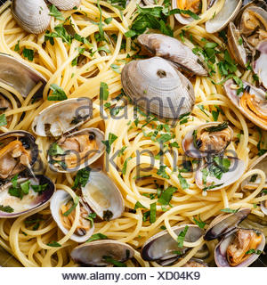 Spaghetti alle vongole pâtes aux fruits de mer aux palourdes close up Banque D'Images