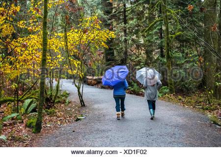 Deux femmes courir sous la pluie avec des parapluies, Victoria, Colombie-Britannique, Canada Banque D'Images