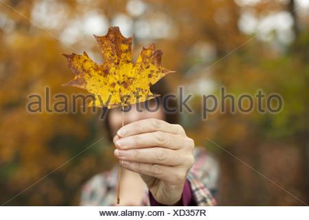 Woodland en automne une femme tenant une feuille d'automne une feuille d'érable dans sa main