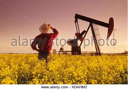 Un agriculteur donne sur un champ de colza en fleurs avec une huile pumpjack dans le fond près de Carlyle, Saskatchewan, Canada