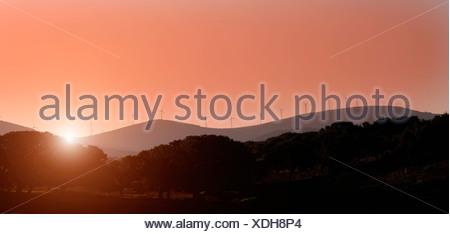 Silhouette d'éoliennes sur les collines rurales Banque D'Images