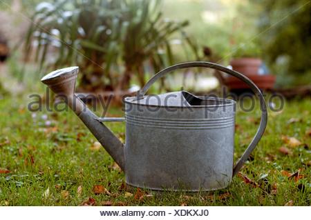 Un arrosoir en métal sur une pelouse de jardin Banque D'Images