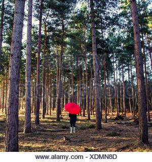 Femme debout dans la forêt avec parapluie Banque D'Images