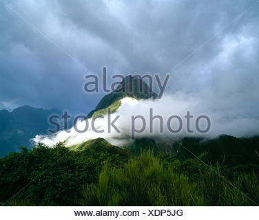 La Nouvelle-Zélande. Milford Sound. faible niveau nuage au-dessus de montagne. Banque D'Images