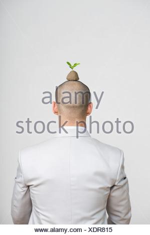 Businessman avec un jeune arbre sur sa tête
