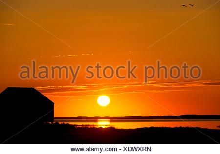 Lever de soleil sur l'étang de sel avec un abri à bateau silhouette Eastham Cape Cod, MA USA Banque D'Images