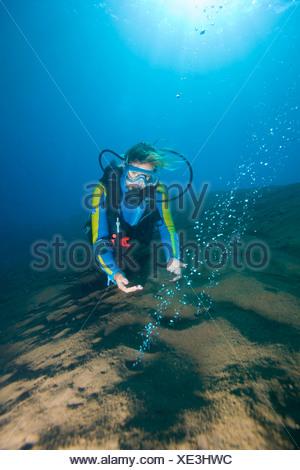 Scuba Diver en observant les bulles de gaz volcaniques, l'augmentation de la chaleur de la mer, île volcanique, Sangean, Indonésie, Asie du Sud Est Banque D'Images