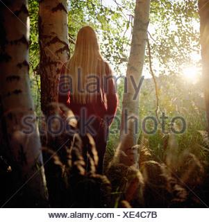 Vue arrière d'une jeune femme debout près d'un bouleau dans une forêt Finlande Banque D'Images